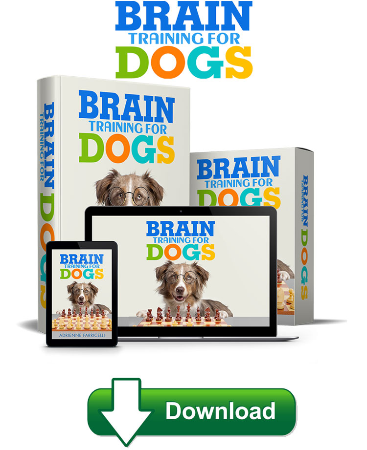 Brain Training For Dogs is well-displayed that all its sections are split into particular areas of problematic behaviour.